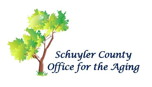 schuyler county dating The park occupies 25 acres of land having a tranquil wooded background it has two large bronze eagle monuments surrounded by 20 granite benches and over 860 granite bricks with engraved names of veterans dating back to the revolutionary war.